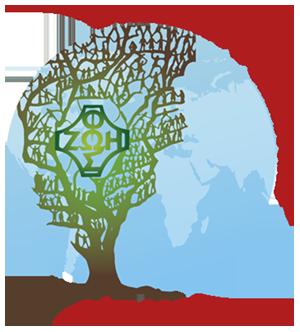 Ruch Światło - Życie Archidiecezji Szczecińsko - Kamieńskiej